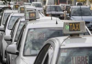 Zaragoza propone un búho taxi para los fines de semana